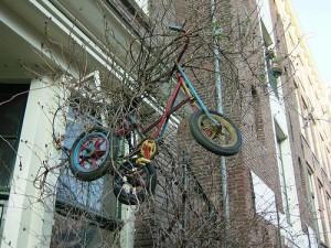 велосипед лезет на дерево