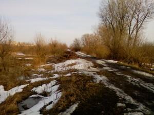Зимой в поле без велосипеда
