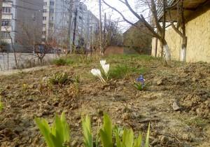 Весна вступает в свои права