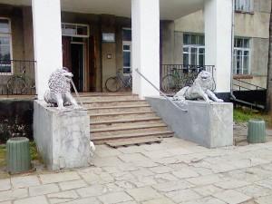 Лечебница, кошки и львы