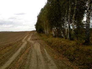 Полевая велосипедная дорожка