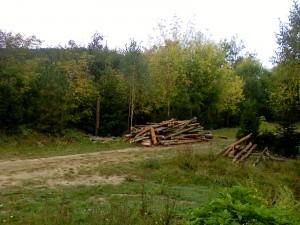 Соколец набор из дров