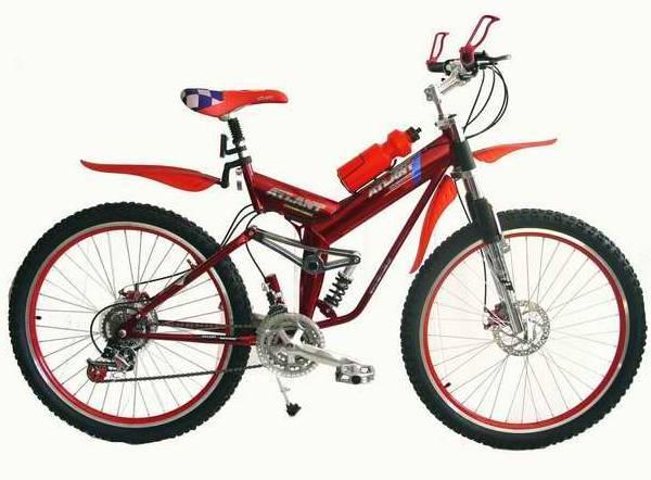 Ашан байк ashan bike