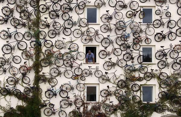 магазин велосипедов bike store