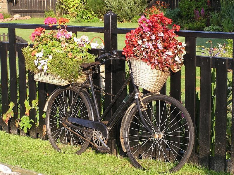 Цветочные велосипеды