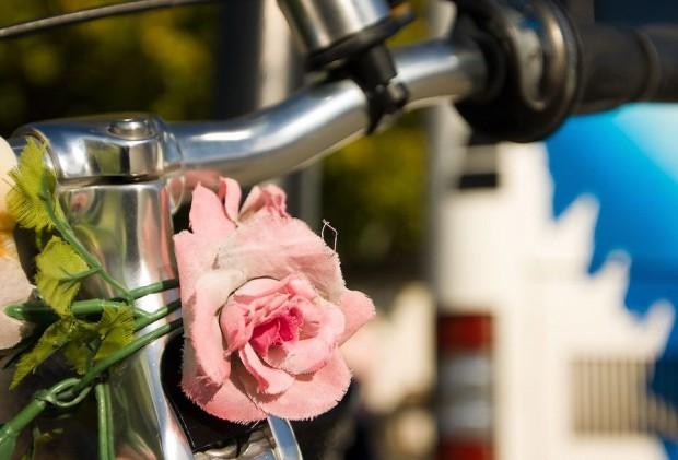 Велосипедная Дания