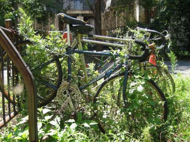 брошенные велосипеды old bike
