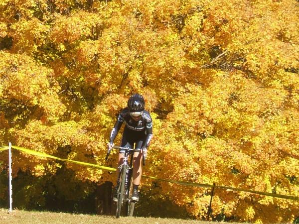 На велосипеде осенью bike autumn фgolden