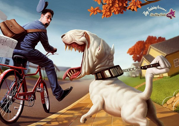 Собаки и велосипедист