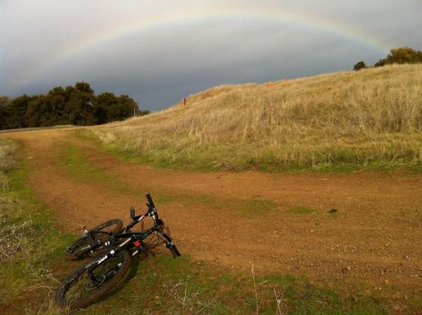 На велосипеде летом bike summary