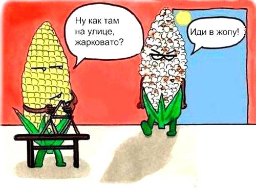 жаркое лето