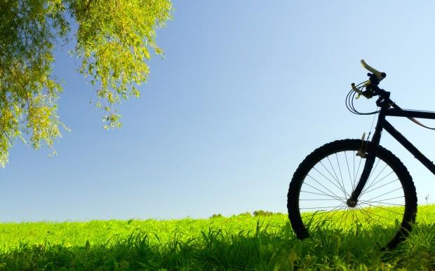 Зеленый велосипед обои