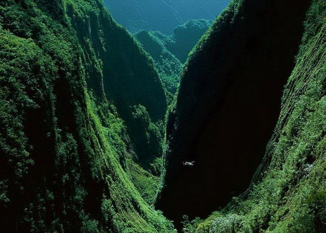 Острове Реюньон. Ущелье Bras de Caverne