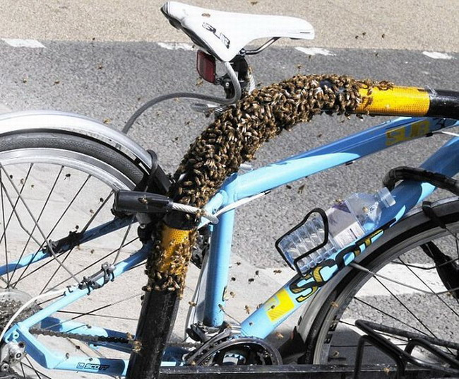 Идеальный велосипедный замок