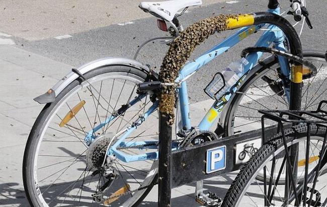 купить велосипедный замок