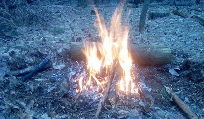 Ночлег в лесу – ночной костер