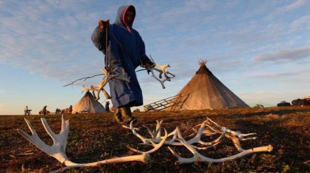 О палатке велотуристам Palatka