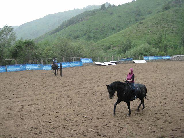 окрестности Алма-Аты лошадки