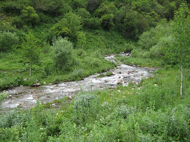 окрестности Алма-Аты горная речка