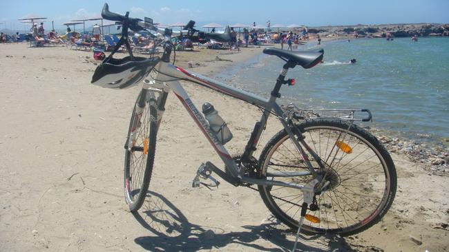 Велосипед Bergamont Fluxus 2010 общий вид