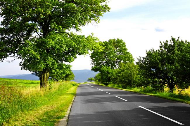 велосипедная дорожка bike road