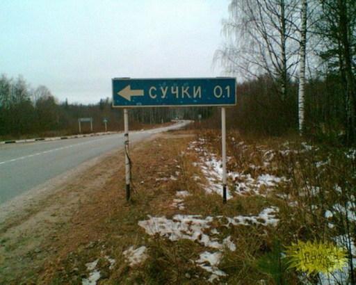 велосипедные маршруты - сучки