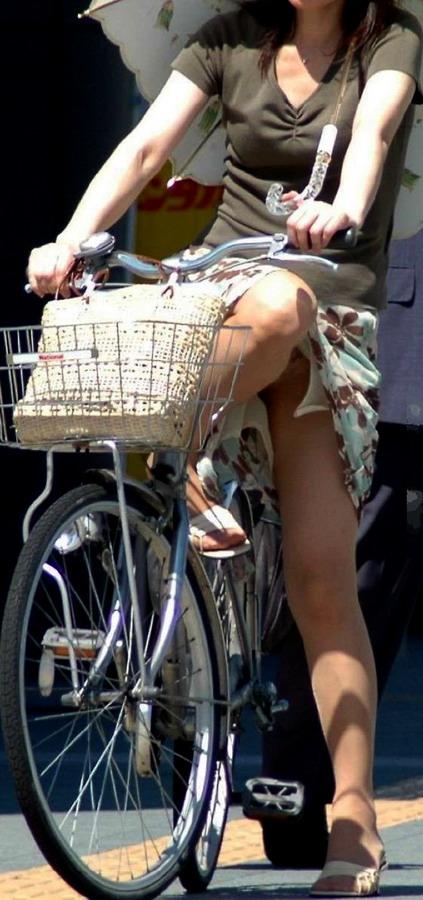 Велосипедные дорожки в Нидерландах