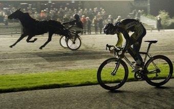 Кто быстрее – лошадь или велосипед?