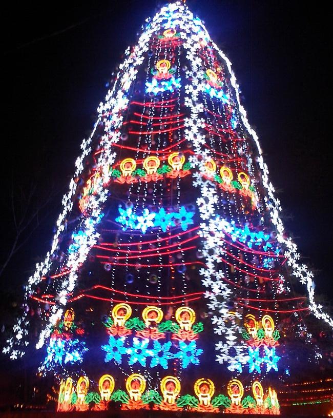 прикольное поздравление с Новым Годом, Винница, елка