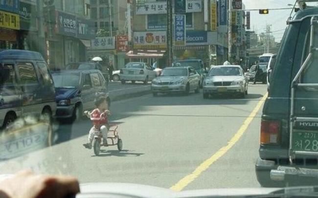 дорогу велосипеду