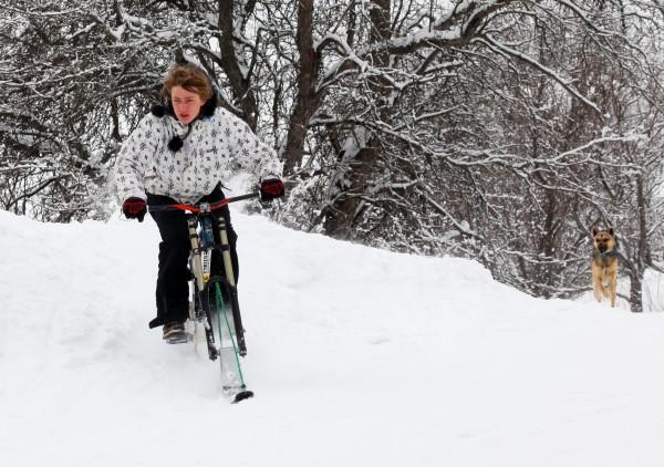 Лыжисипед или Вело Лыжи