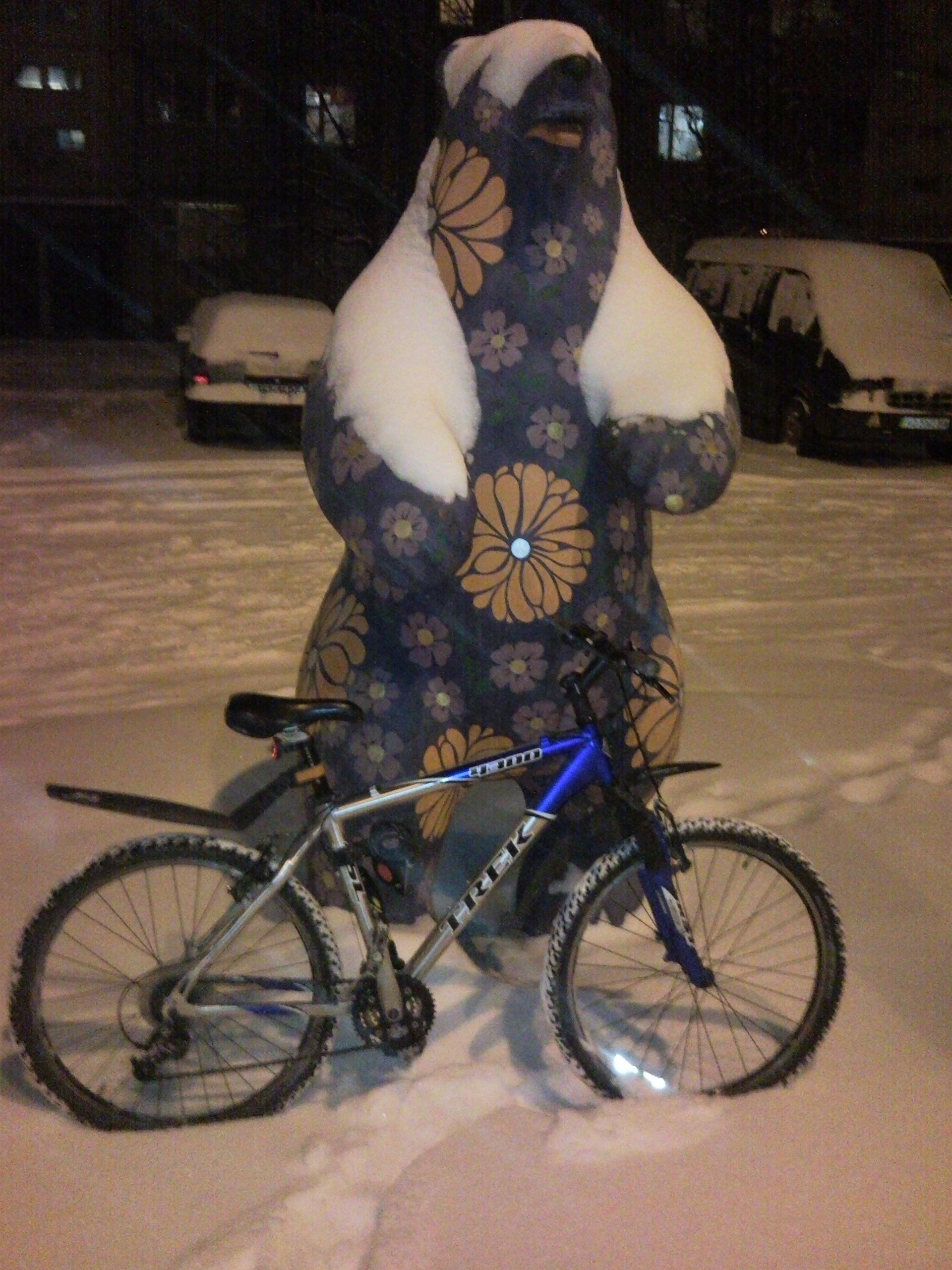 Велосипедный Ужгород