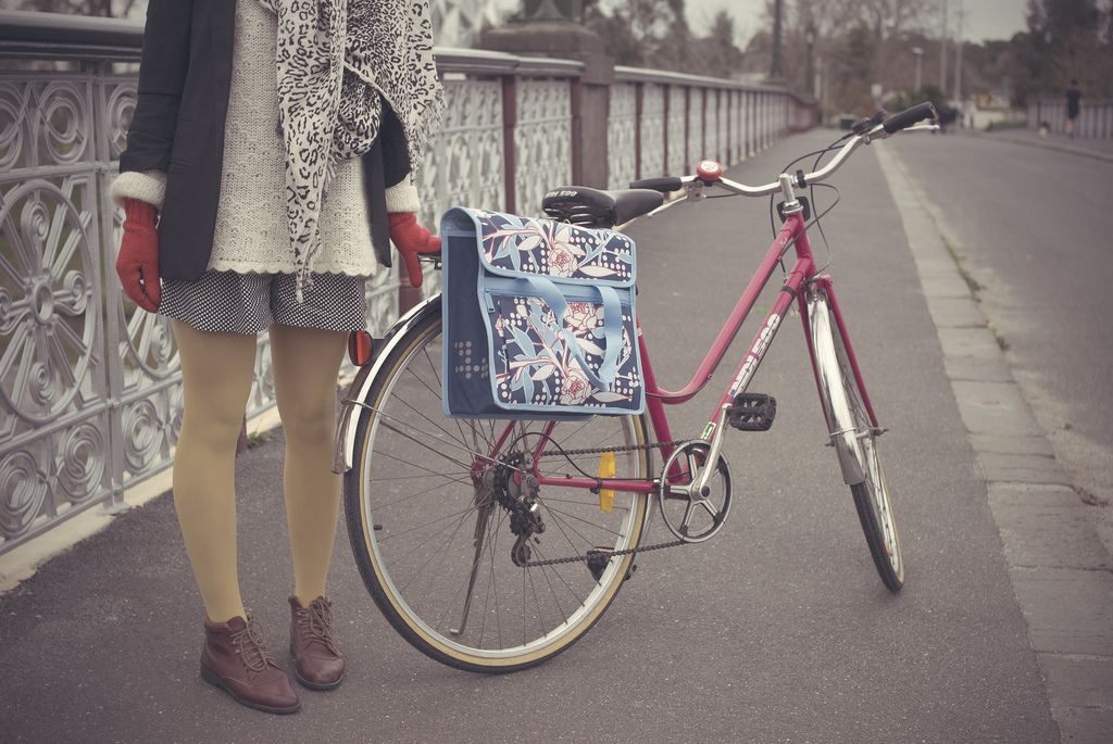 велосипед для пушистой прелеести