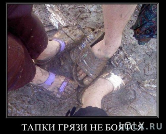 гламурные модные туфли