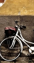 Велосипедные обои. Ситибайк