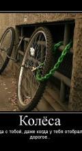 велосипед украли