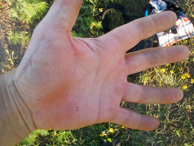 Da-Ma – новые перчатки натирают рук