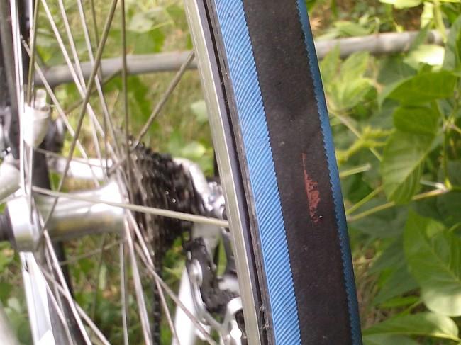 велосипед Kellys ARC 2.9 резина