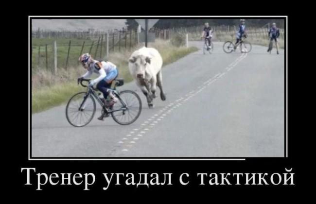 Велосипедисты. Тренер угадал с мотивацией