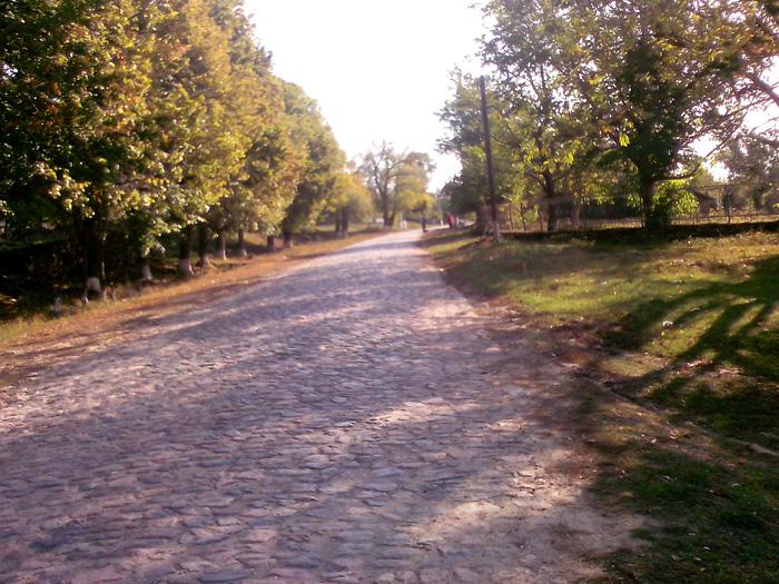 Брусчатка дорога