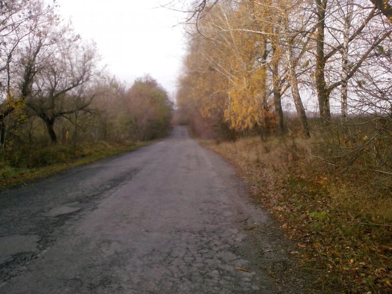 Велосипедные дороги