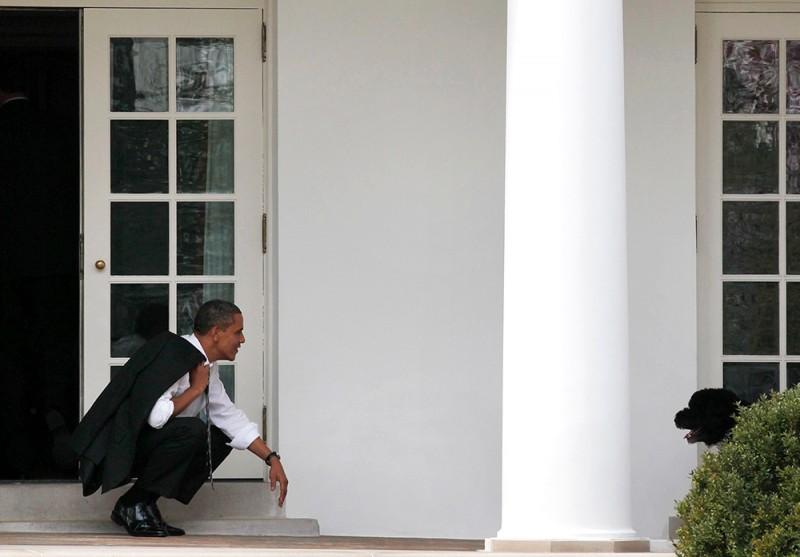 Президент США Барак Обама подзывает свою собаку у Белого дома в Вашингтоне