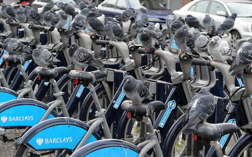 велосипеды Бориса в Лондоне