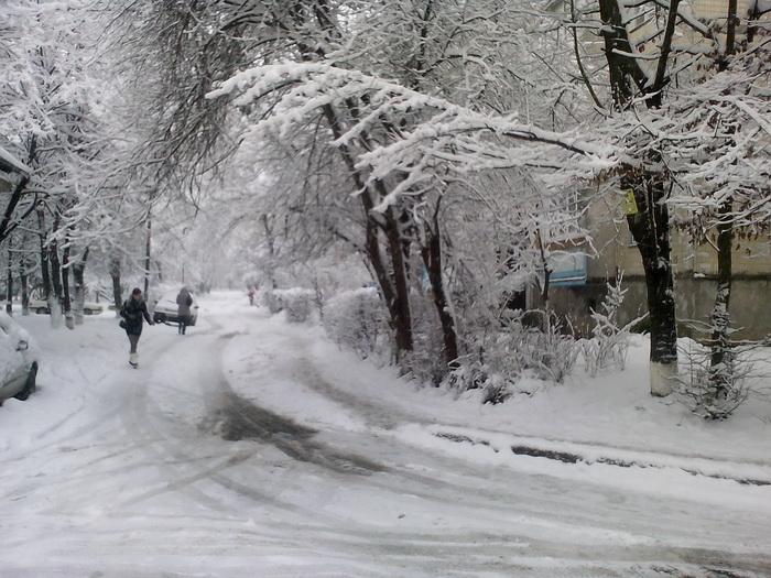 Зима в Виннице, снег на деревьях