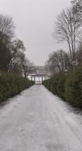 Музей Пирогова аллея зимой