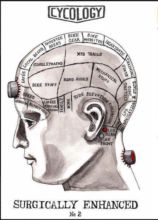 велосипедный мозг
