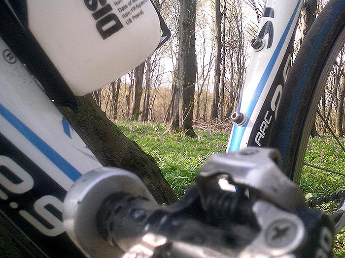 Лес через велосипед
