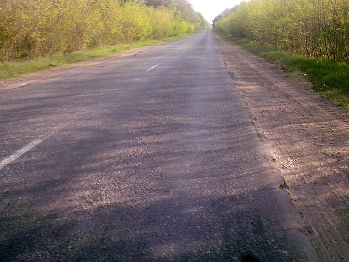 Ладыжинская дорога
