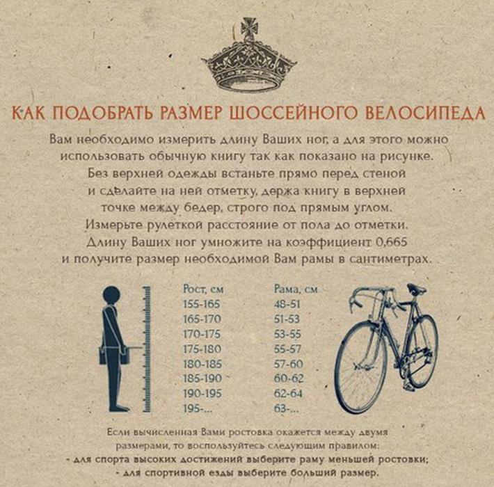 Как выбрать ростовку шоссейного велосипеда