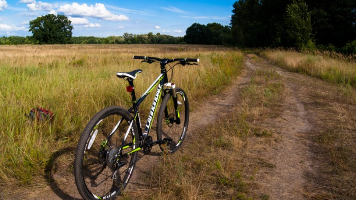 Canondale Trail SL 4